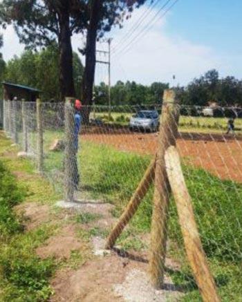 school fencing
